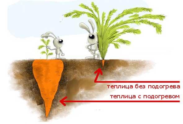 Способы подогрева земли в теплице